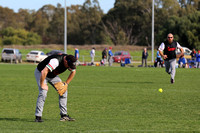 Softball Masters - Bendigo June 2013  (1013)