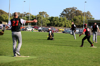 Softball Masters - Bendigo June 2013  (1023)