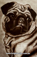 CA950 Cosmo Pug Dog Pet Illustration Custom Airbrushed by Bright Design Airbrush Studio